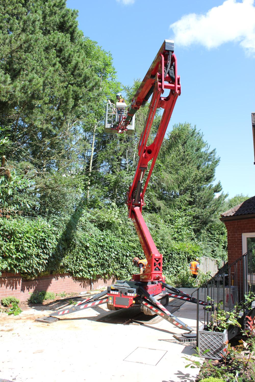 Best spider cherry picker for tree work – professionals praise Hinowa