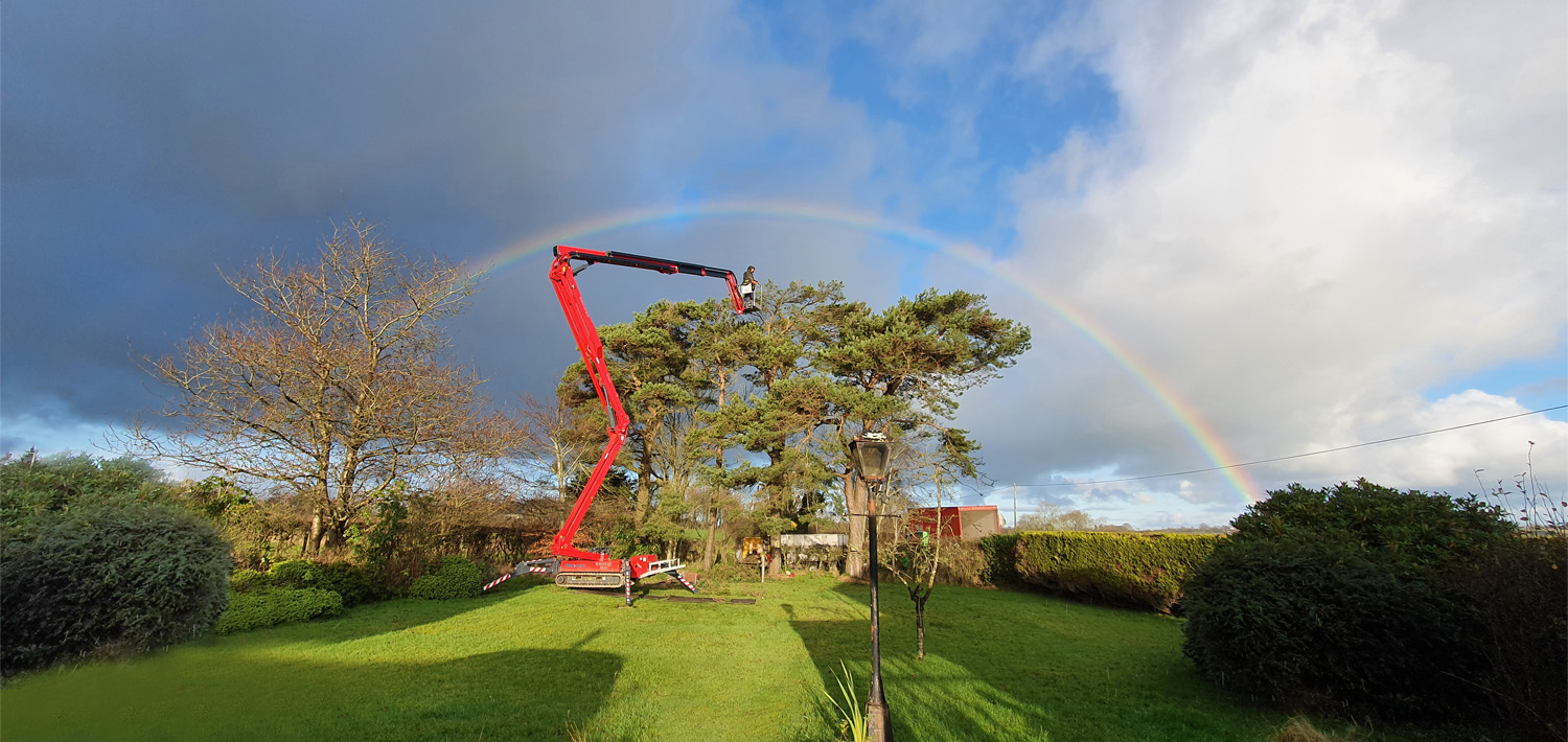 Hinowa rainbow snap wins picture of the year prize