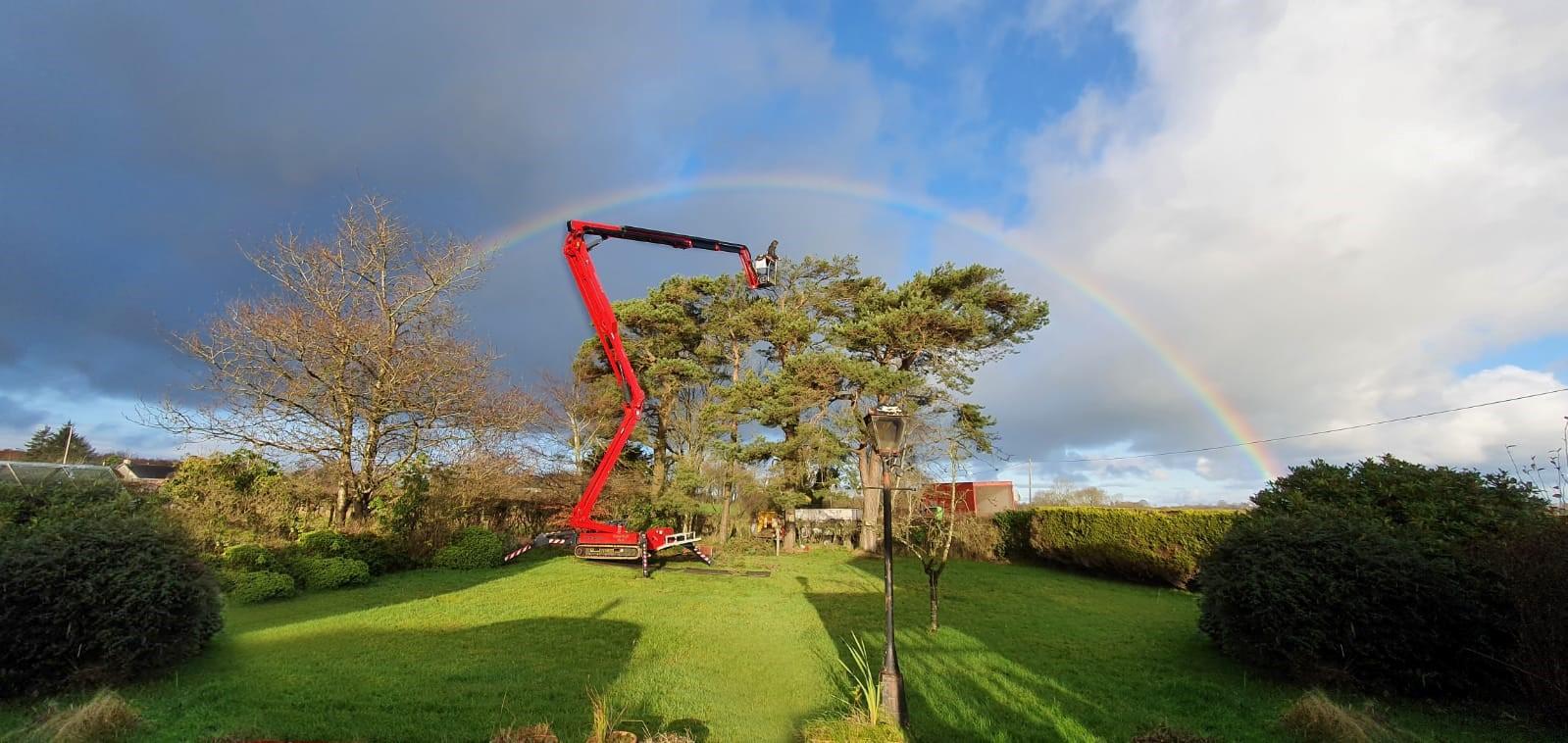 Tree surgeon invests in new Hinowa spider platform – and gets free rainbow
