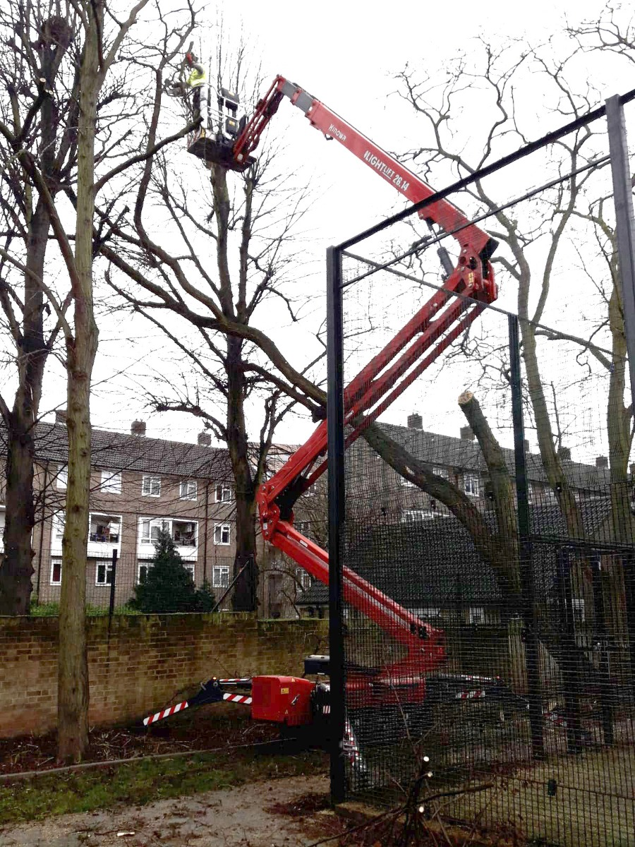 "Tree services specialist hails ""phenomenal"" Hinowa boom lift"
