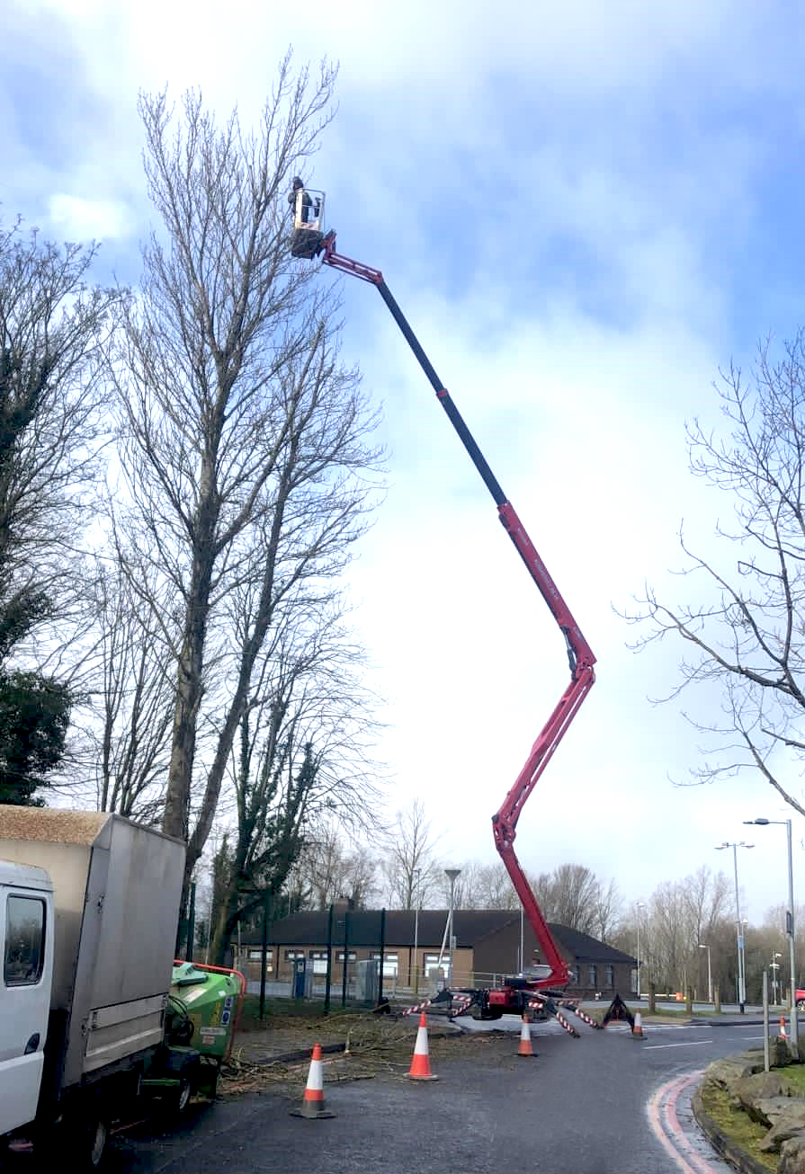 Lithium power Hinowa spider platform impresses tree surgeons