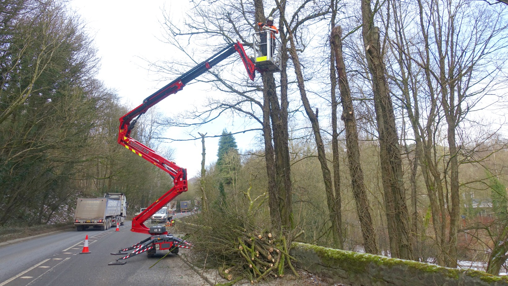 Ash dieback accelerates switch to Hinowa spider power