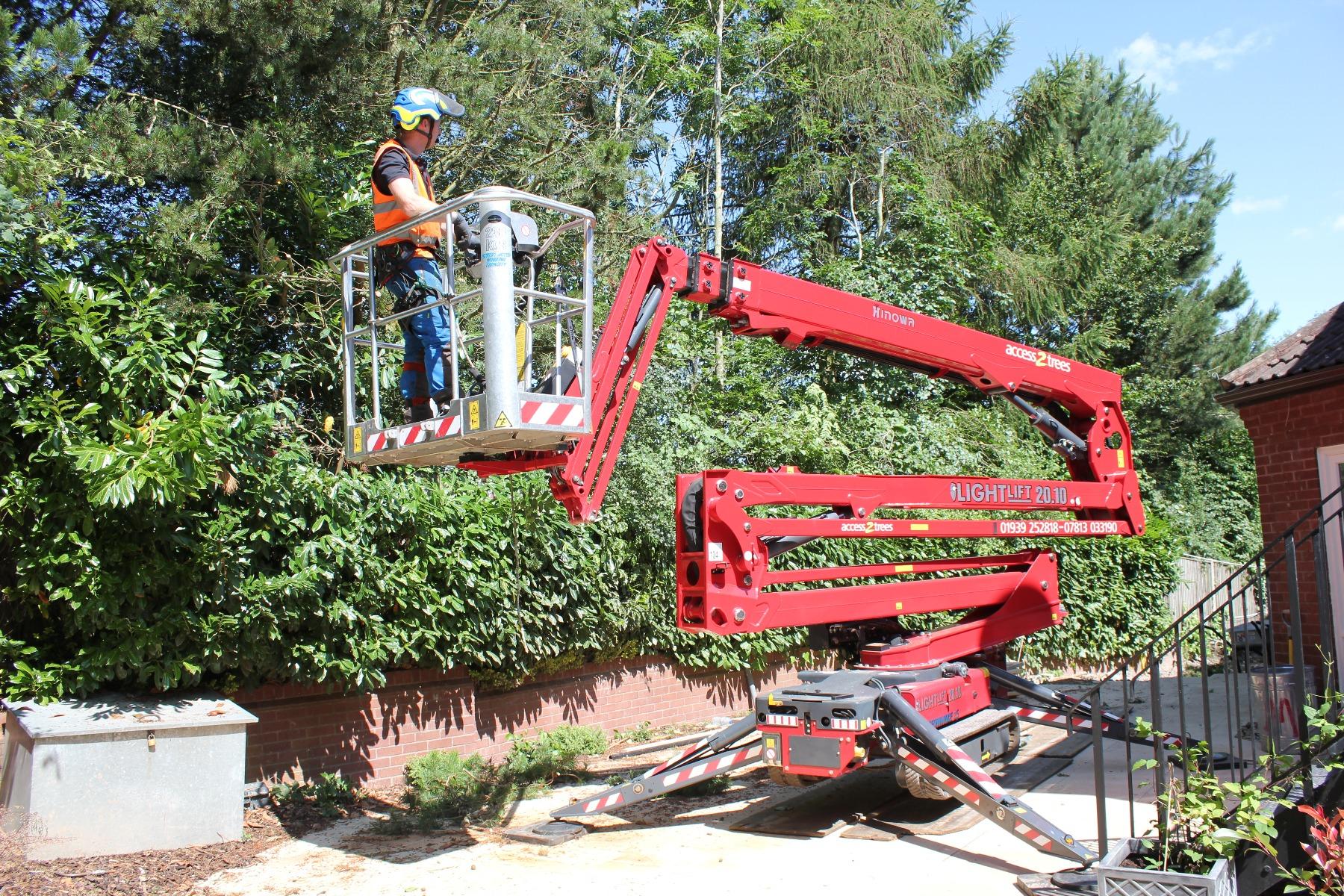 APS Access 2 Trees - Hinowa 20
