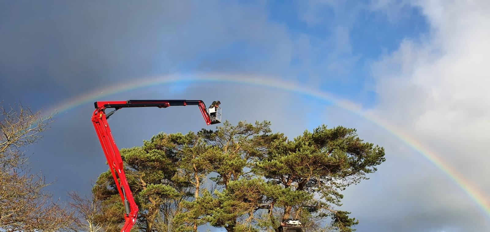 Hinowa LL 26.14 - rainbow